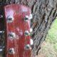 Shaffer Guitar 031 African Mahogany head block