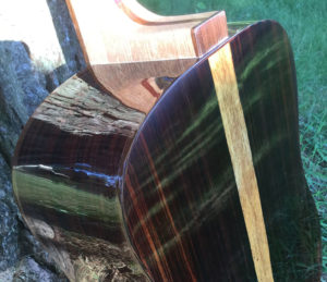 Shaffer Guitar 035 Mexican Cocobolo back and sides